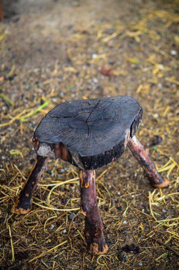 Milking stool   The Elliott Homestead