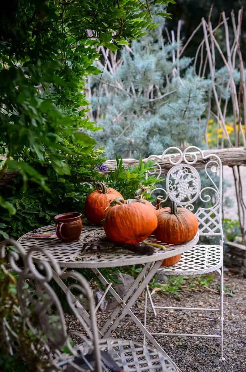 My Favorite Garden Inspiration Sources