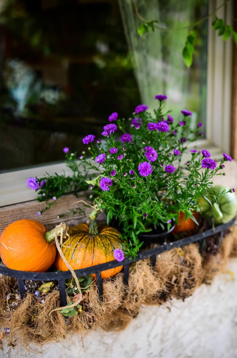 My Favorite Garden Inspiration Sources | The Elliott Homestead (.com)