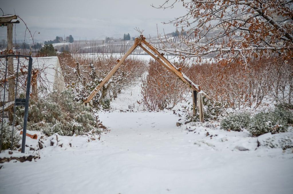 Snowy Garden Pathway | The Elliott Homestead