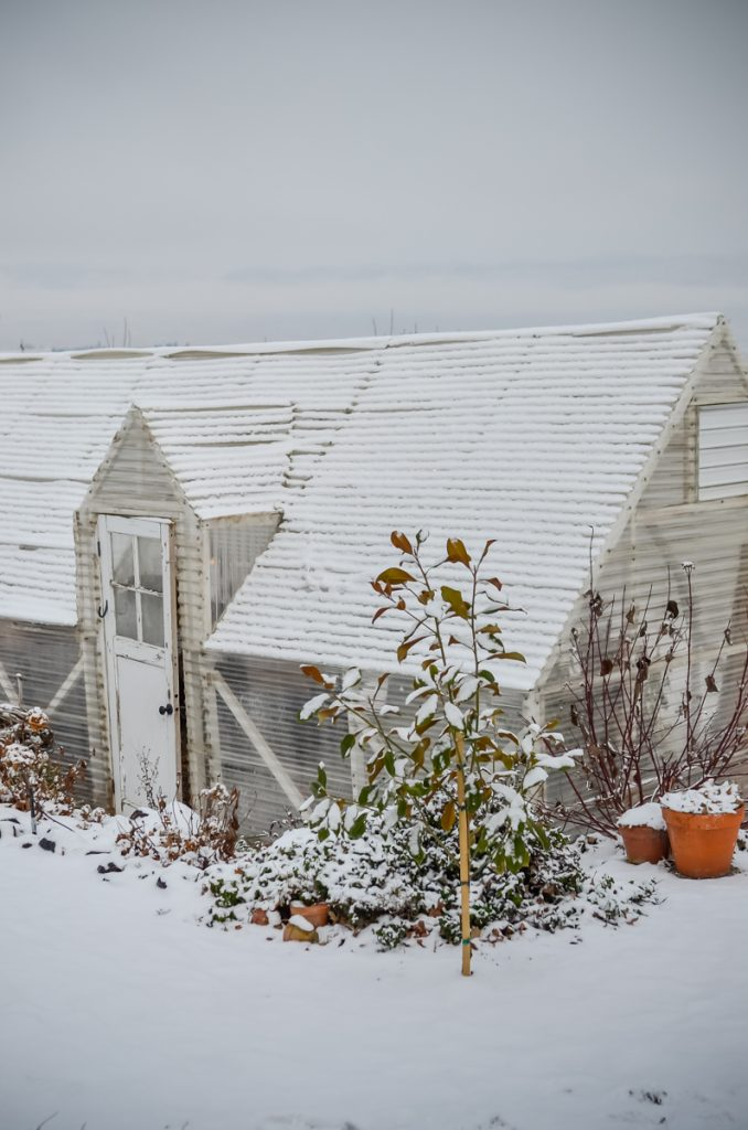 Snowy Greenhouse | The Elliott Homestead