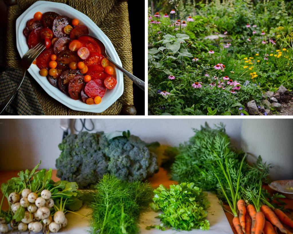 Vegetables I'm growing in 2020 | The Elliott Homestead