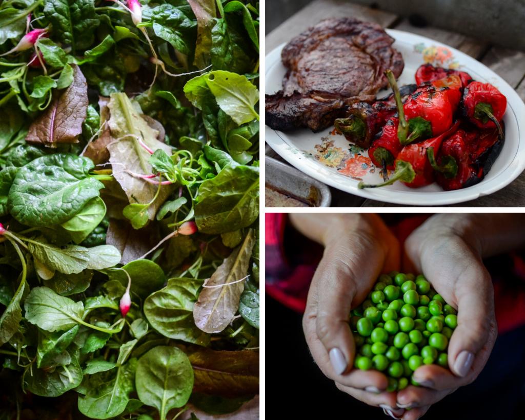 Best Vegetables To Grow in the Garden | The Elliott Homestead