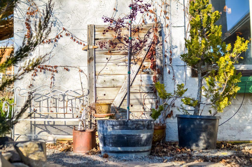 Garden Journal, February | The Elliott Homestead