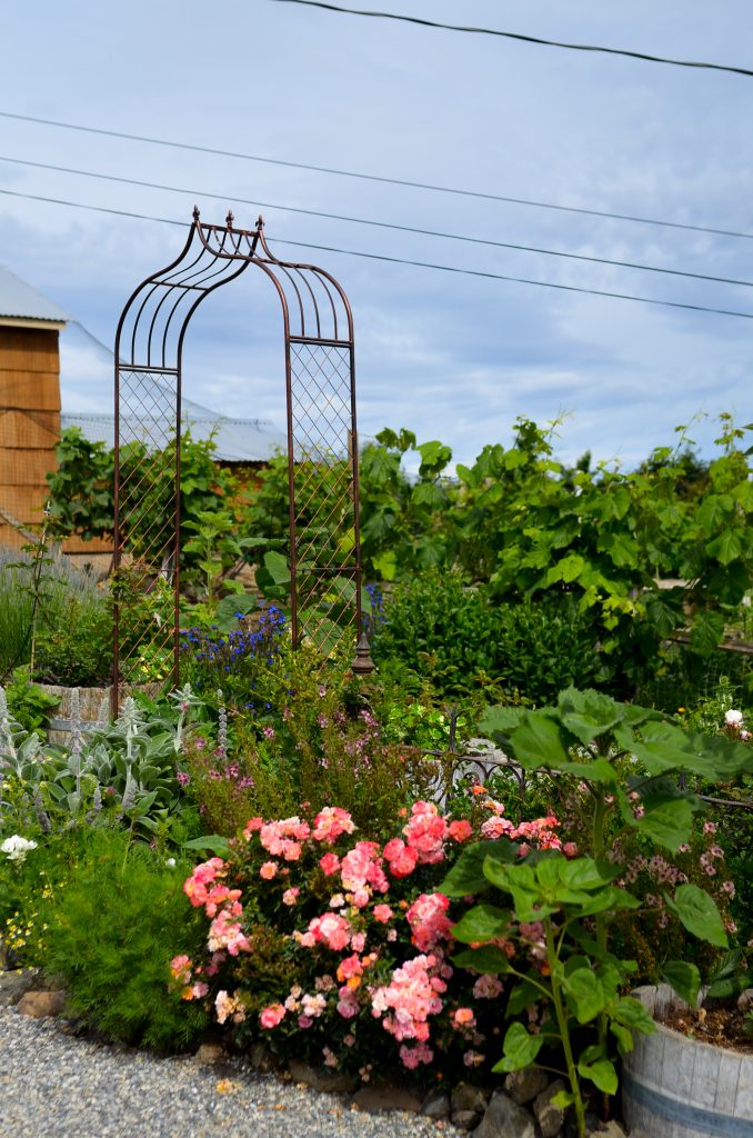 Cottage Garden | The Elliott Homestead (.com) Garden | The Elliott Homestead (.com)