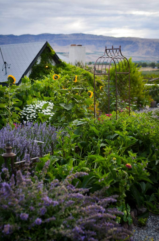 Cottage Garden in Summer | The Elliott Homestead