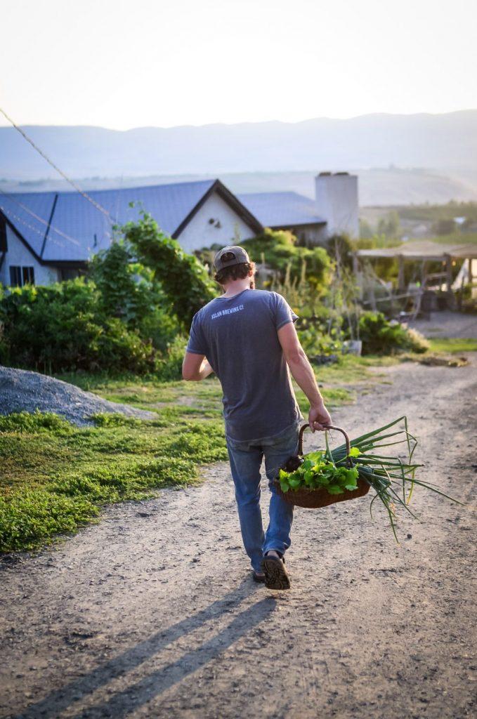 Complete List of What I'm Growing In My Vegetable Garden | The Elliott Homestead