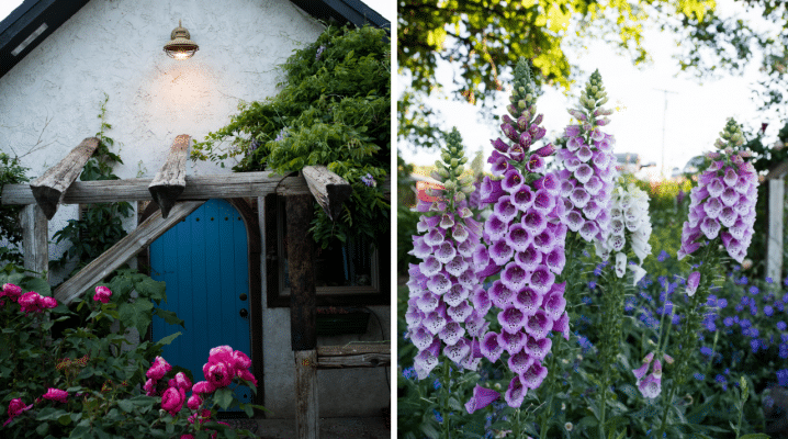 A romantic stroll through the cottage gardens | The Elliott Homestead (.com)