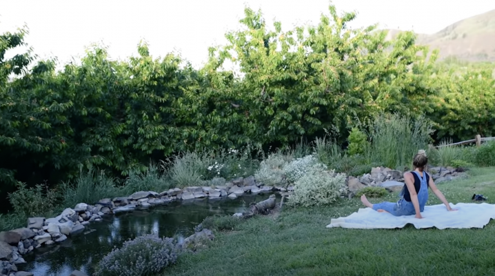 Garden pond | The Elliott Homestead.com