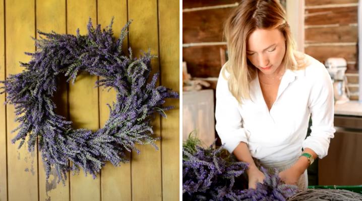Lavender Harvest | The Elliott Homestead (.com)