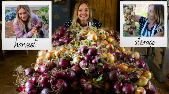 A year's worth of onions! | The Elliott Homestead (.com)